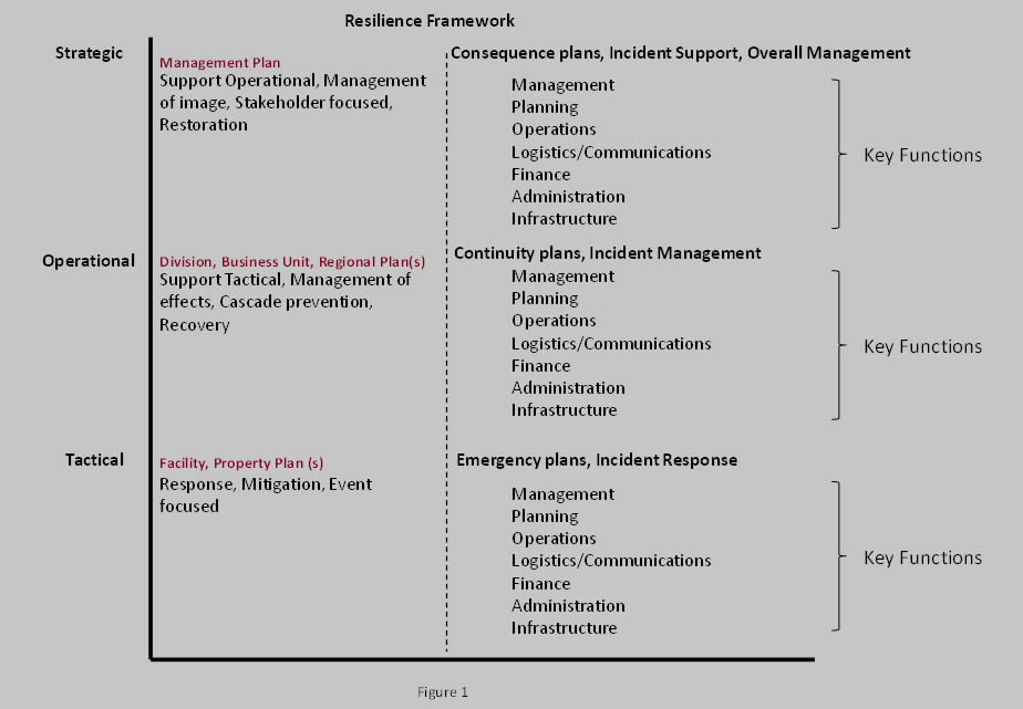 Developing effective disaster recovery programs: what can we